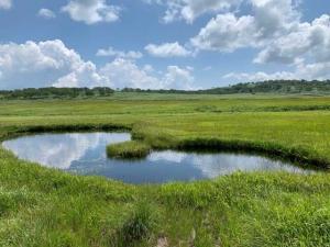 200802-1_今日の雨竜沼