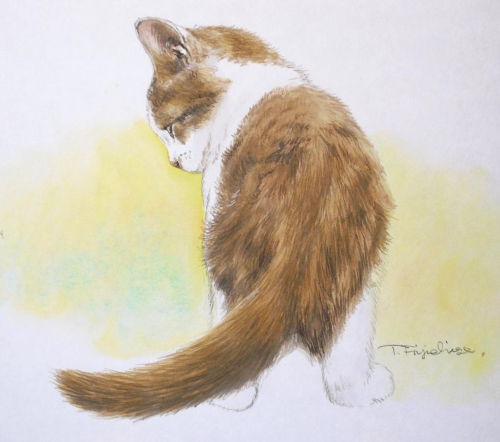 1色紙猫.JPG
