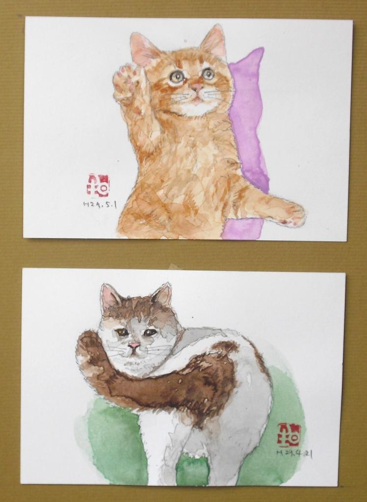 3はがき絵猫.JPG