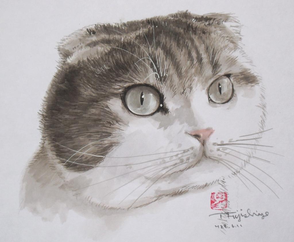 1たんたん肖像.JPG