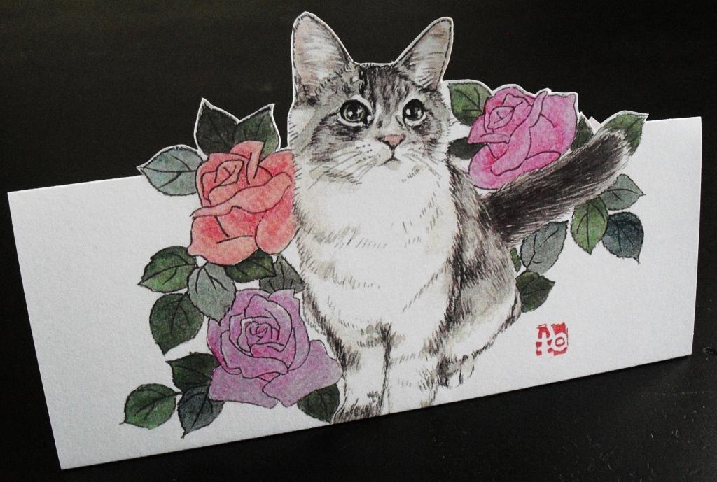 4ばら猫.JPG