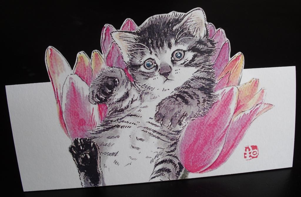 6花と猫.JPG