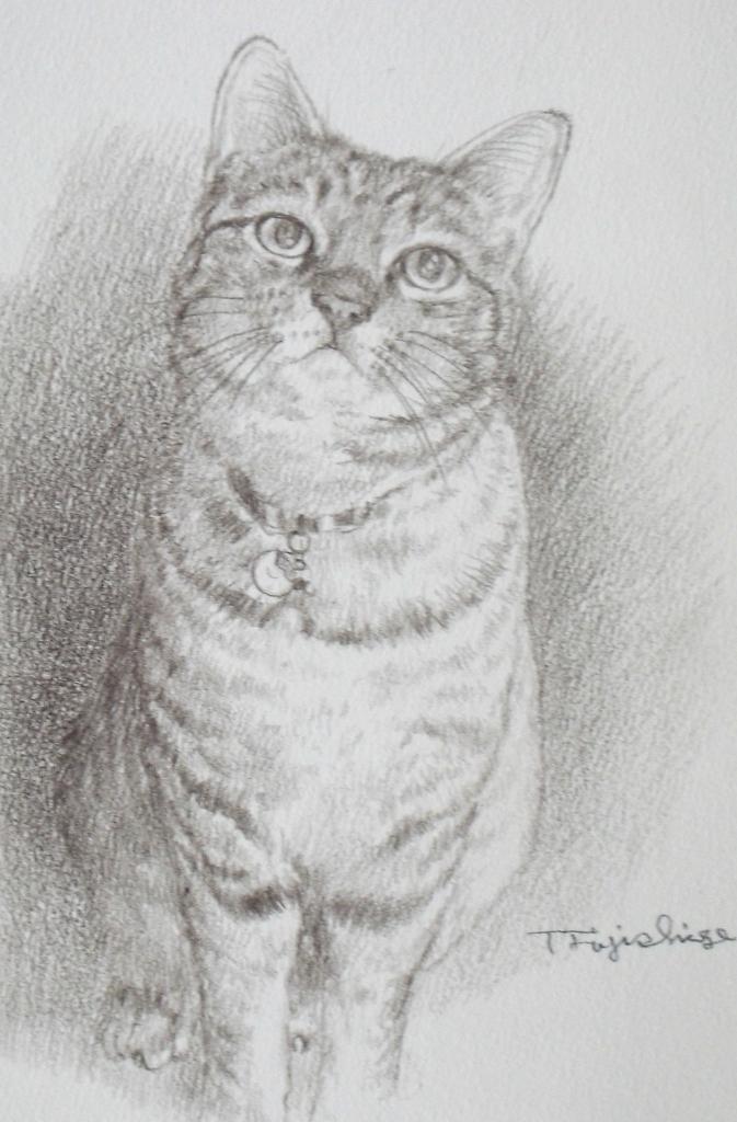 3セピア猫.JPG