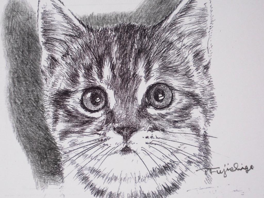 猫絵no7.jpg