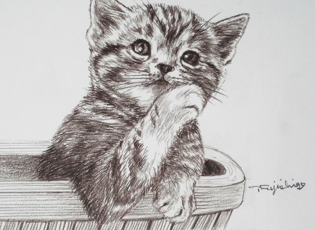 猫絵no11.jpg