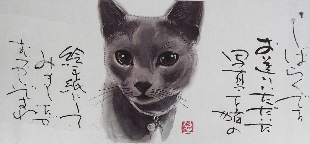 CIMG4382猫絵1
