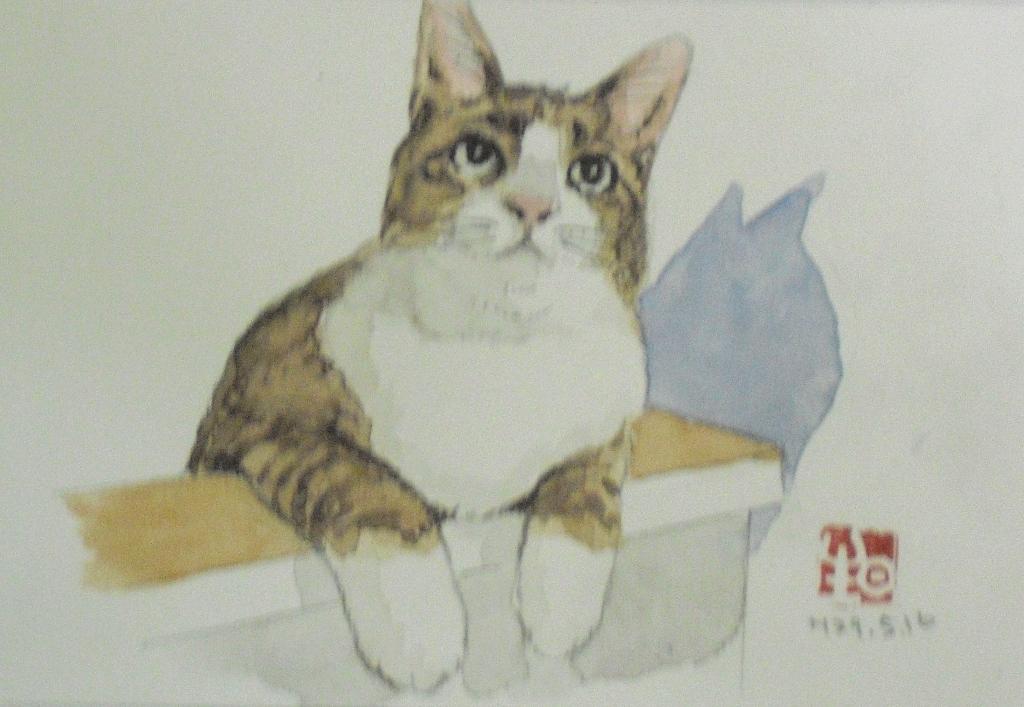 CIMG4391はがき猫3.jpg