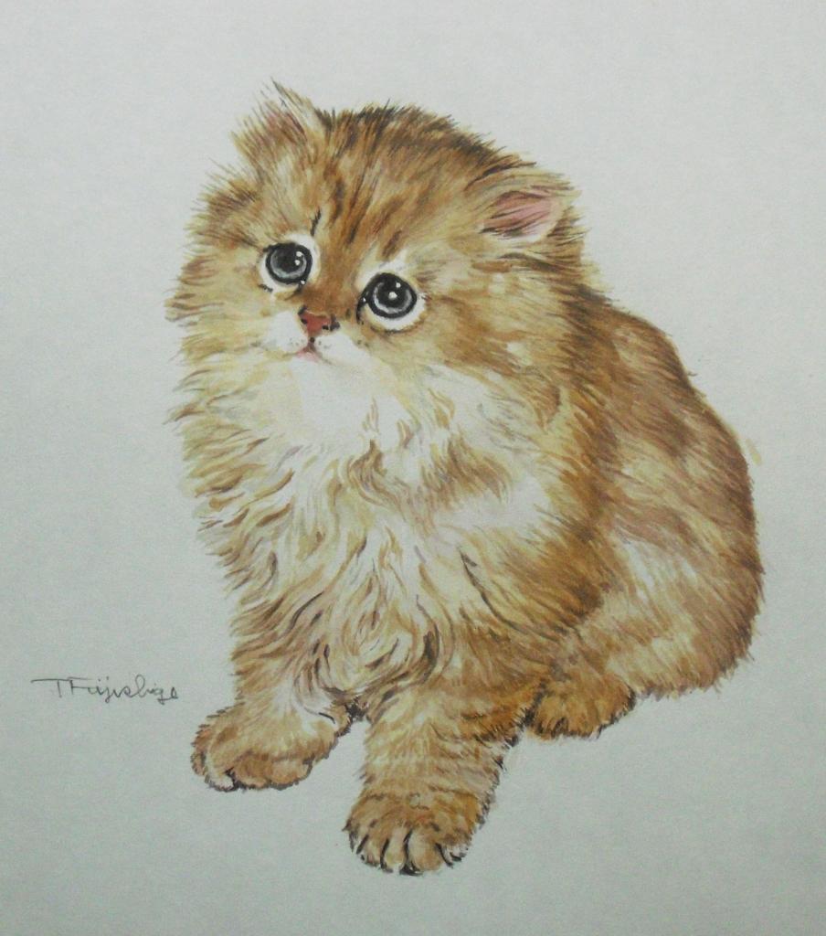CIMG4403猫.jpg