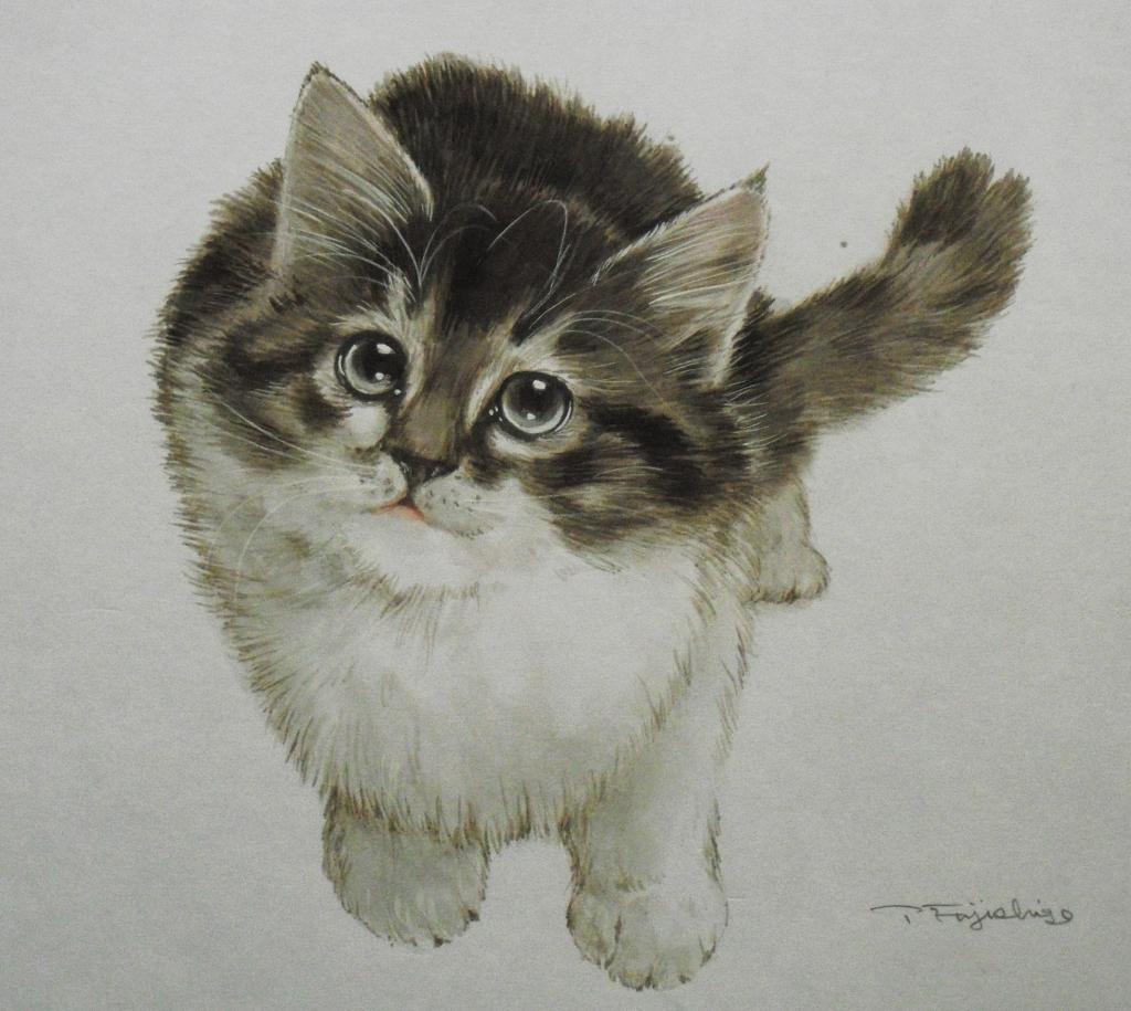 CIMG4404猫.jpg