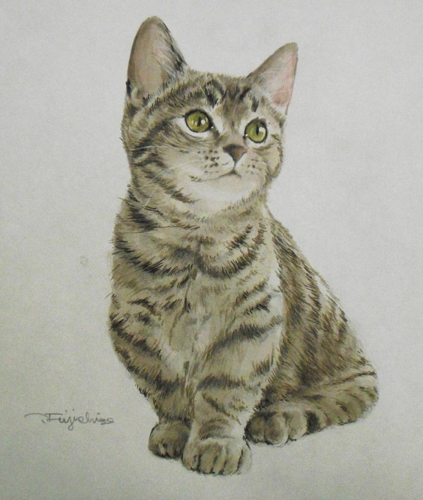 CIMG4409猫.jpg