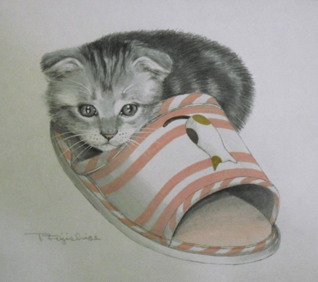 CIMG4415猫.jpg