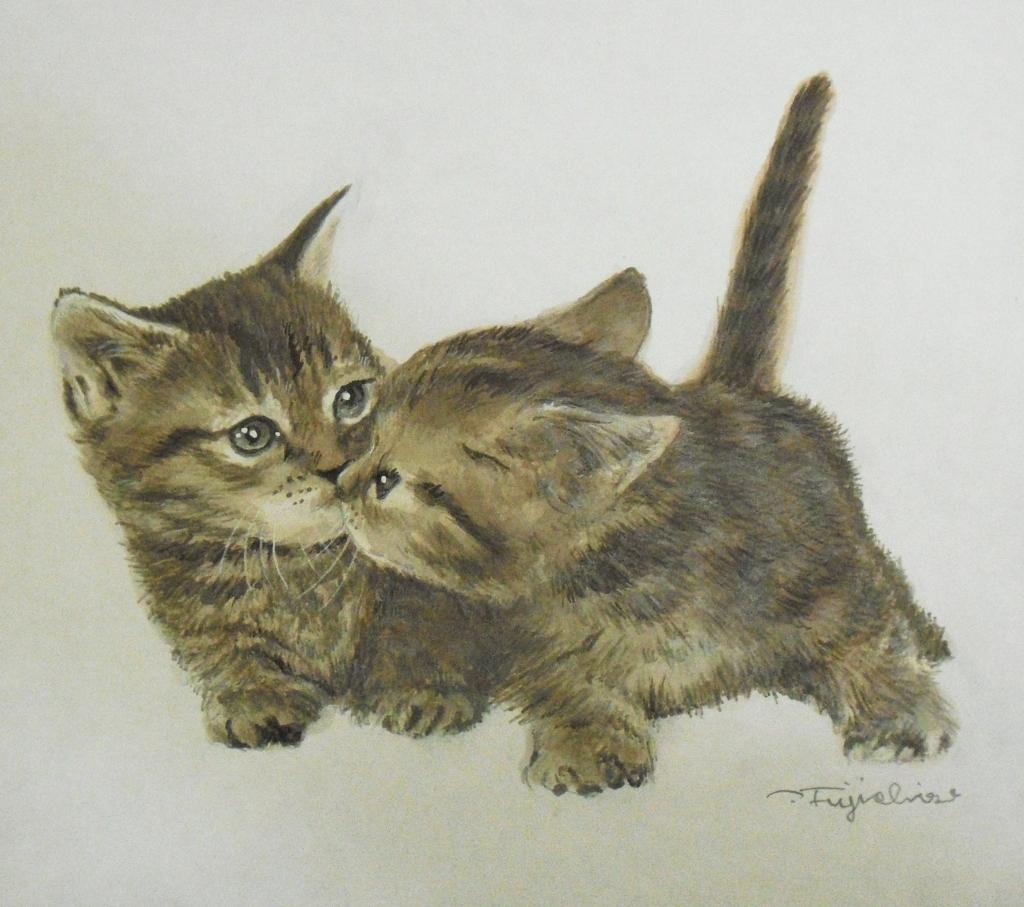 CIMG4418猫.jpg