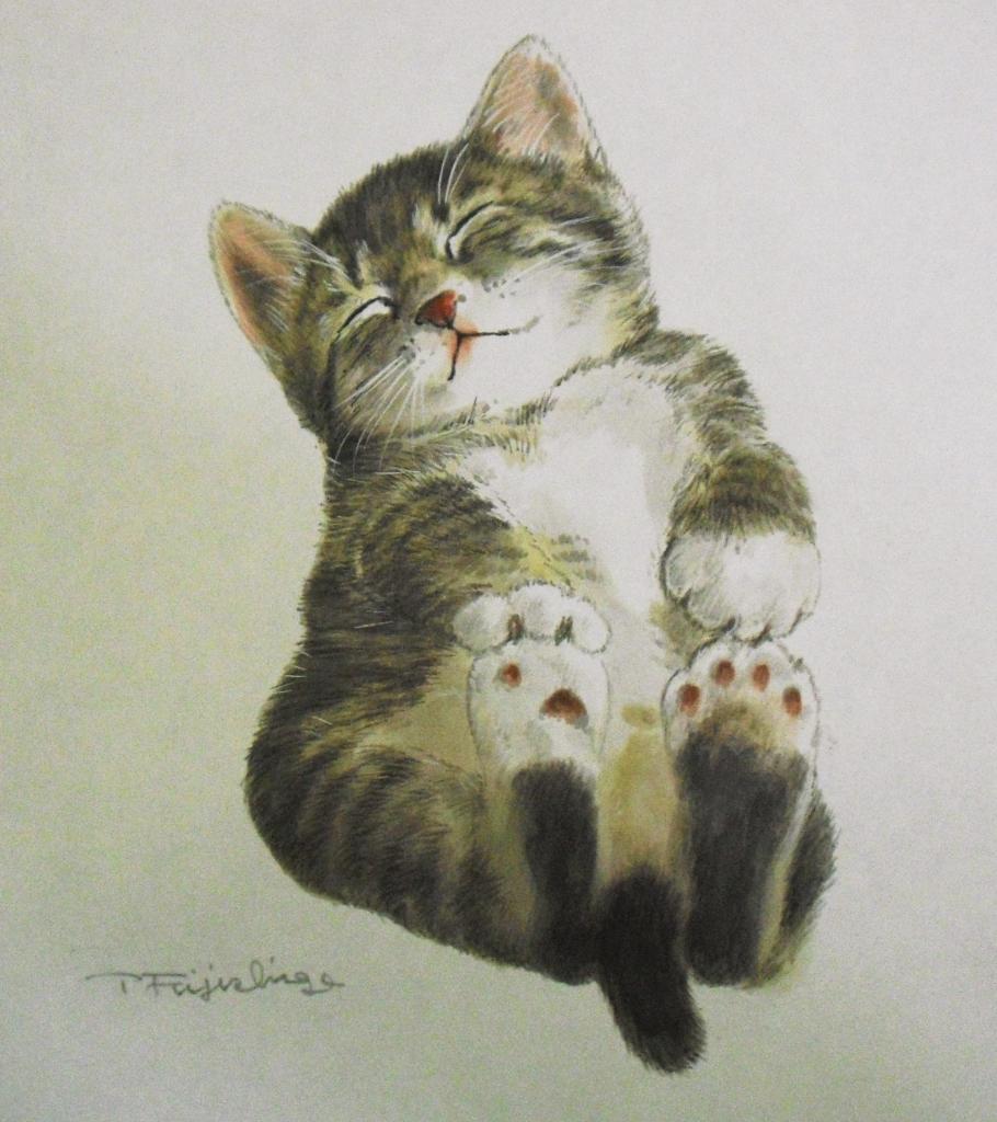 CIMG4420猫.jpg