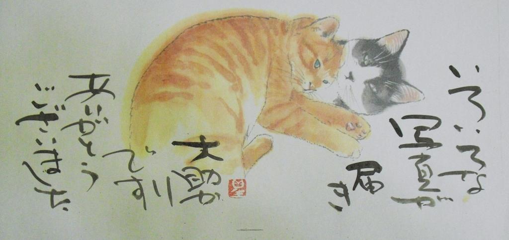 CIMG4424猫.jpg