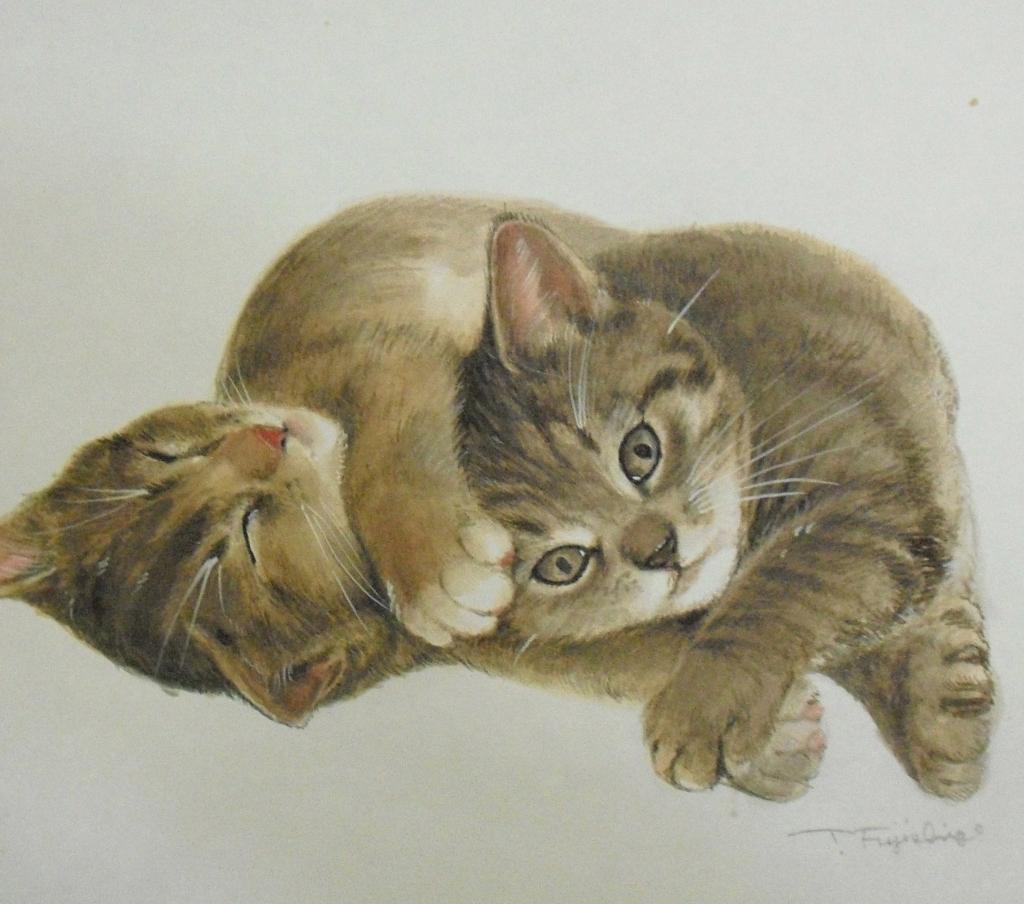 CIMG442猫.jpg