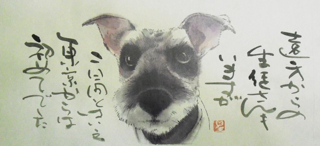 CIMG4423犬.jpg