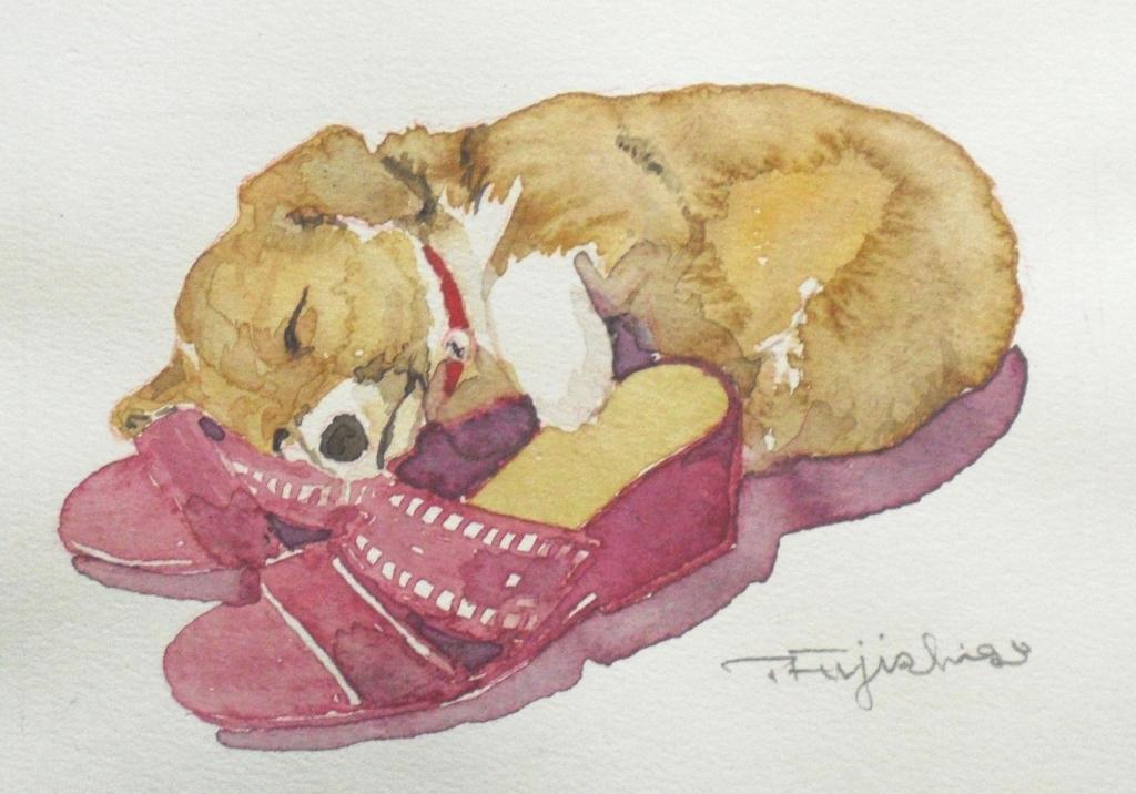CIMG4439犬3.jpg