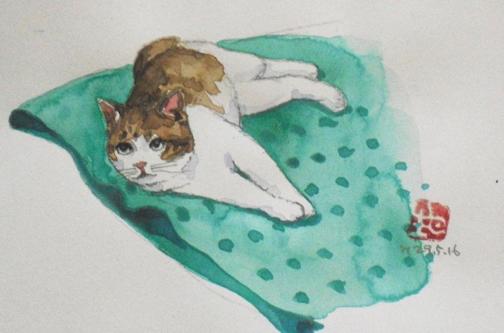 CIMG4440猫4.jpg
