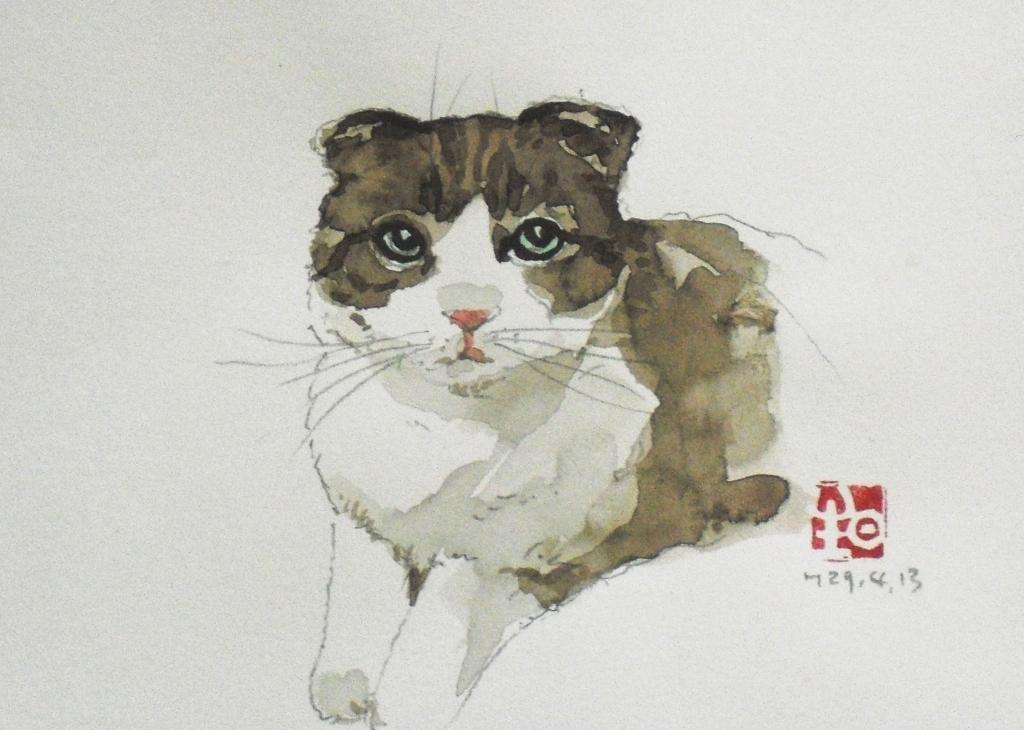 CIMG4441猫5.jpg