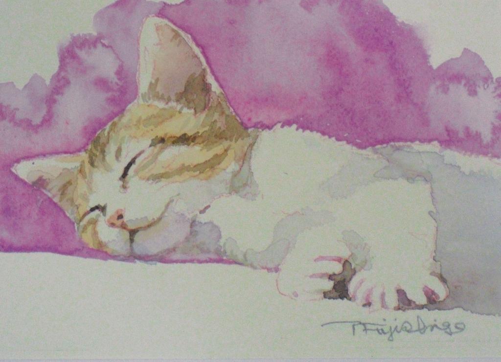 CIMG4443猫1.jpg