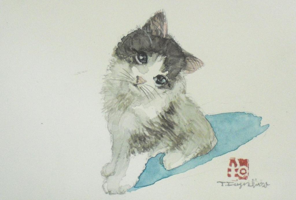 CIMG4446猫4.jpg