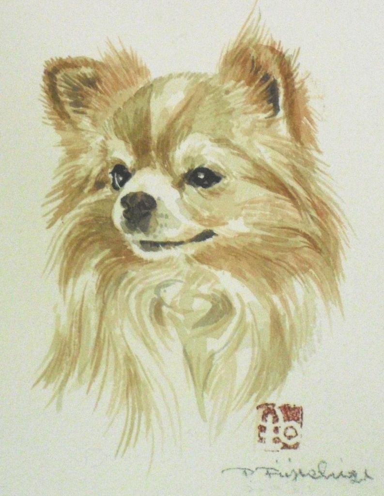 CIMG4452犬6.jpg