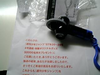 DVC30015_M.jpg