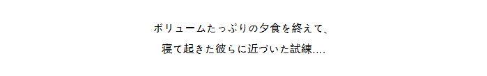 2-t2.JPG