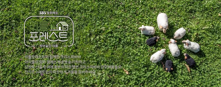 20-shop1_176_top_342658.jpg