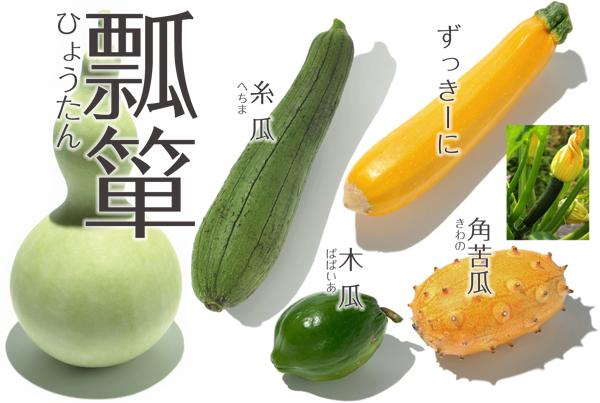 野菜] キュウリ・ウリ | やさい...