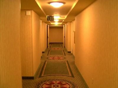 しかし、廊下は・・・