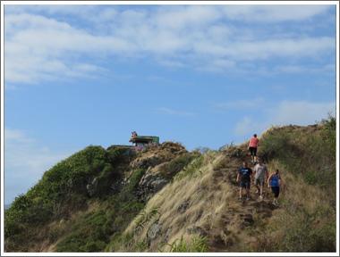 カイヴァリッジ・トレイル (Kaiwa Ridge Trail)
