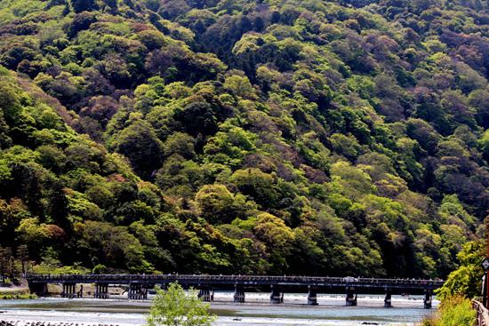 久しぶりの嵐山です(*^^*)