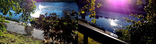 鴨川の水面も輝いています