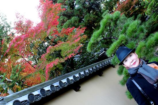 瓦屋根から赤く染まった紅葉