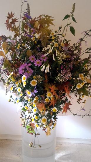 数え切れないほどの愛らしいお花たち