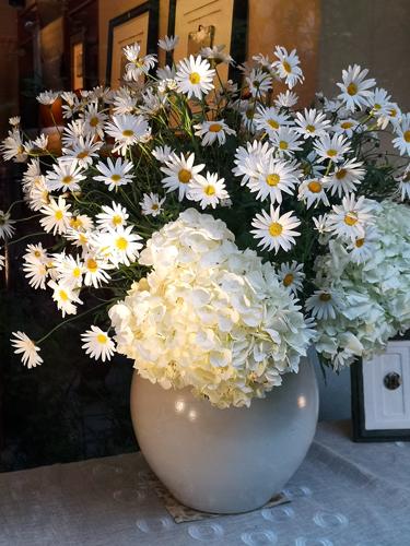春の花がお出向かえ