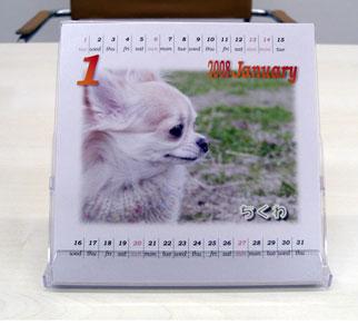 カレンダー作成講座好評開講中!!