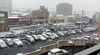 すごい雪が!