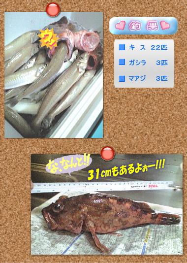 今回の釣果と31cmガシラはTanakaが釣ったのよ〜ん♪