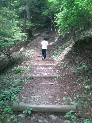 つり橋への道