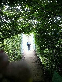 つり橋の入り口