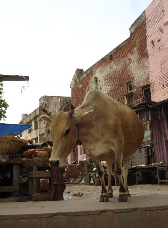 Ghat Pujah