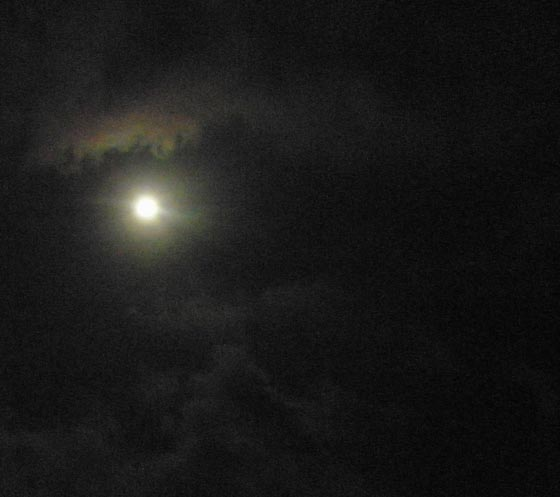 Soqotora Moon