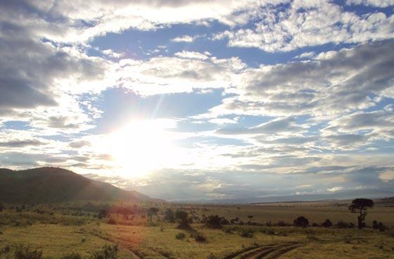 safari Masai Mala