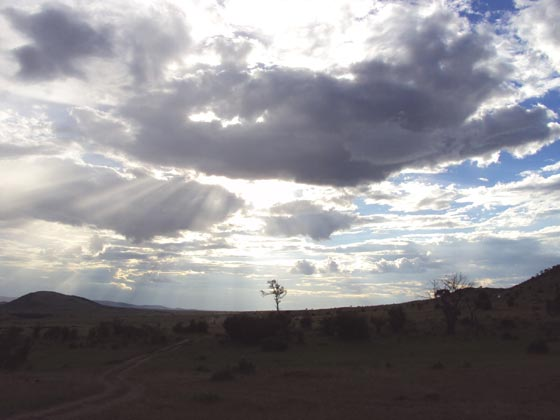 masai mala Landscape