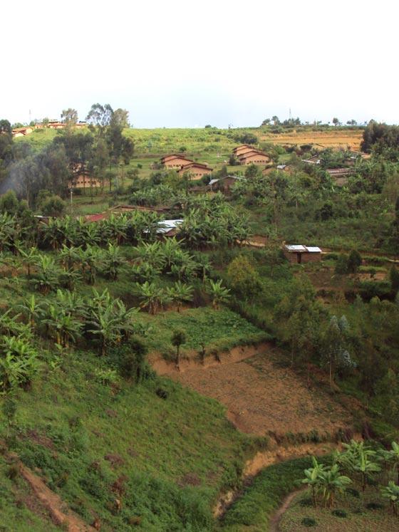 Road 2 Murambi