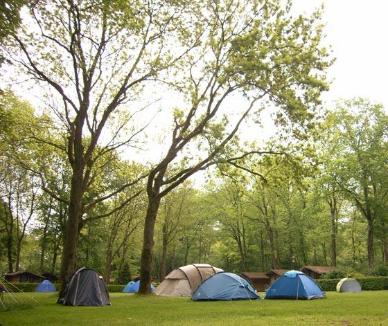 Ams Campsite