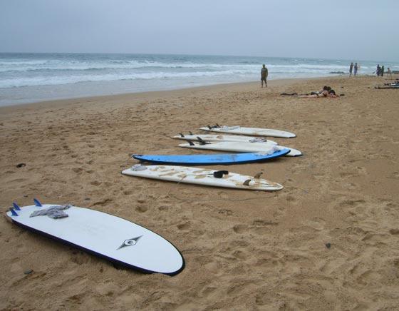 Festival of Surf