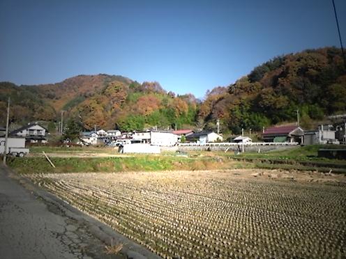 2010-11-12-14.45.16.jpg